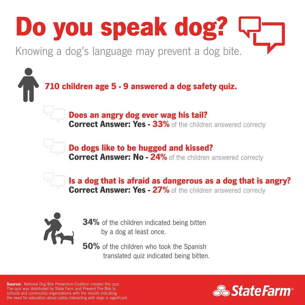 dog bite statistic